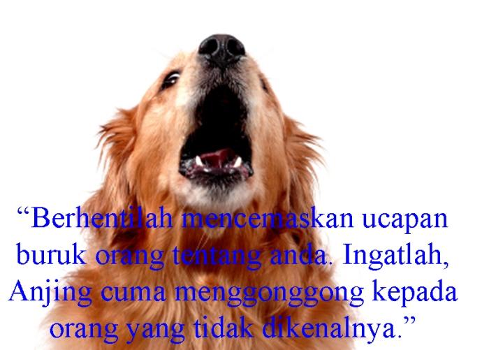 Dog-Barking copy